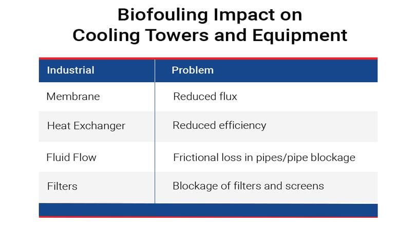 bifouling-impact
